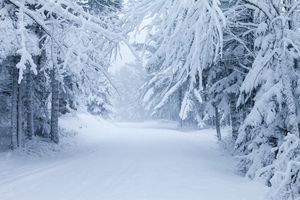 Winter hikes in Maine