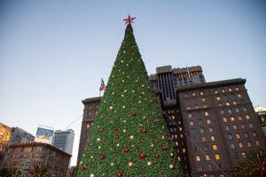 Macy's 25th Annual Great Tree Lighting