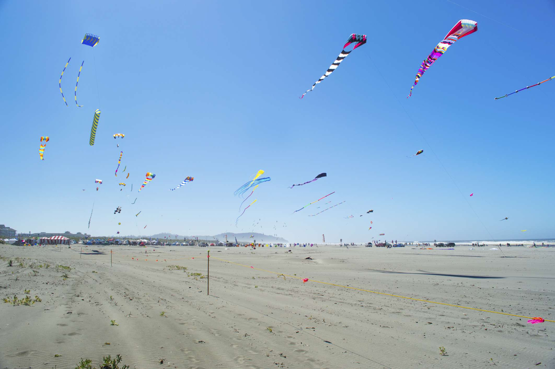 Kites flying on the sky at the Long Beach Kites Festival, WA.