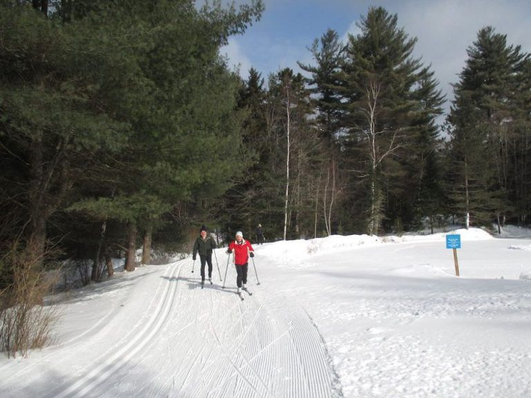Two people cross-country skiing towards camera