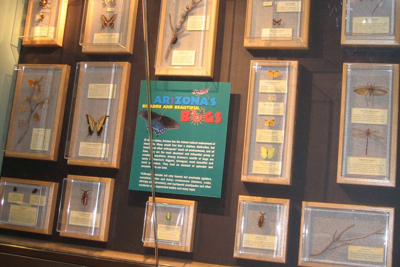 Museo del Aeropuerto Internacional Phoenix Sky Harbor