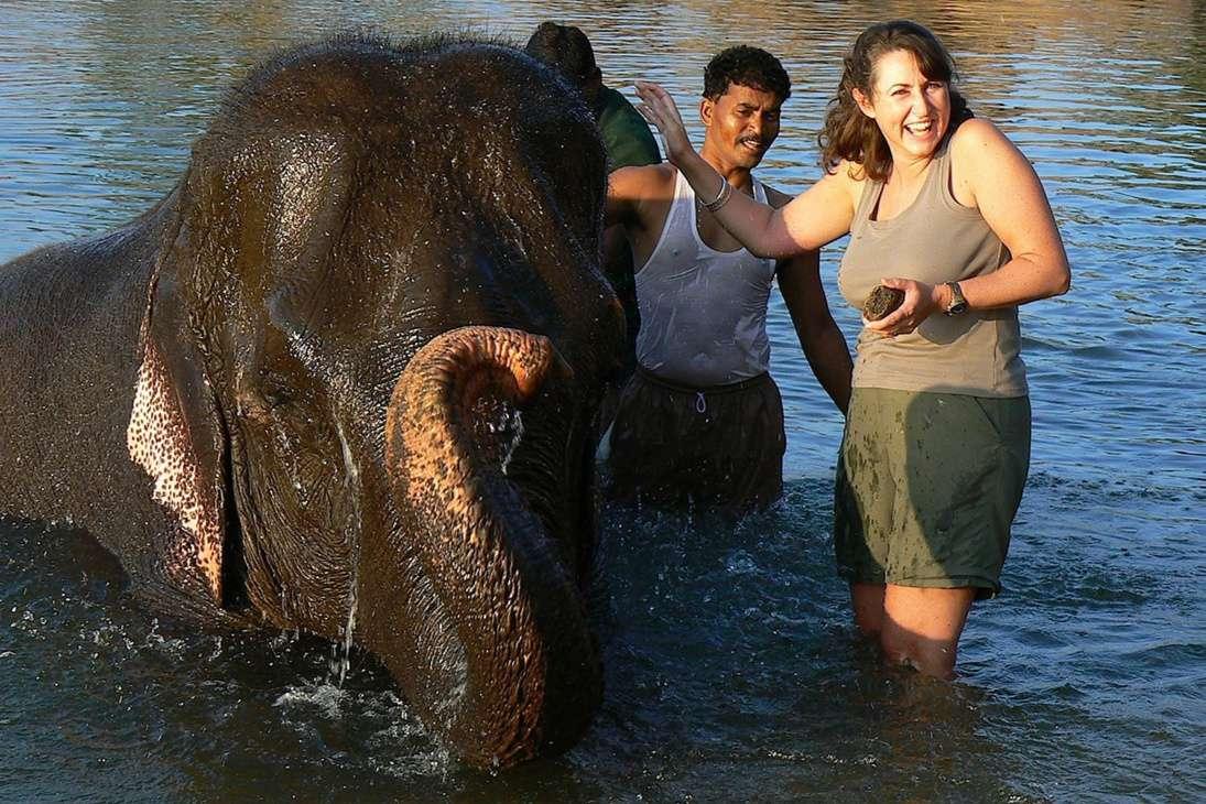 Kipling Camp, Tara the elephant.