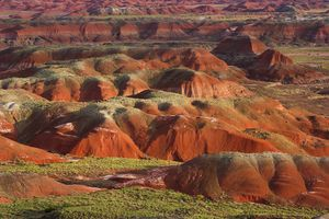 Petrified Forest National Park's painted desert