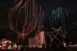 Lights in Tilles Park