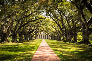 New Orleans plantation