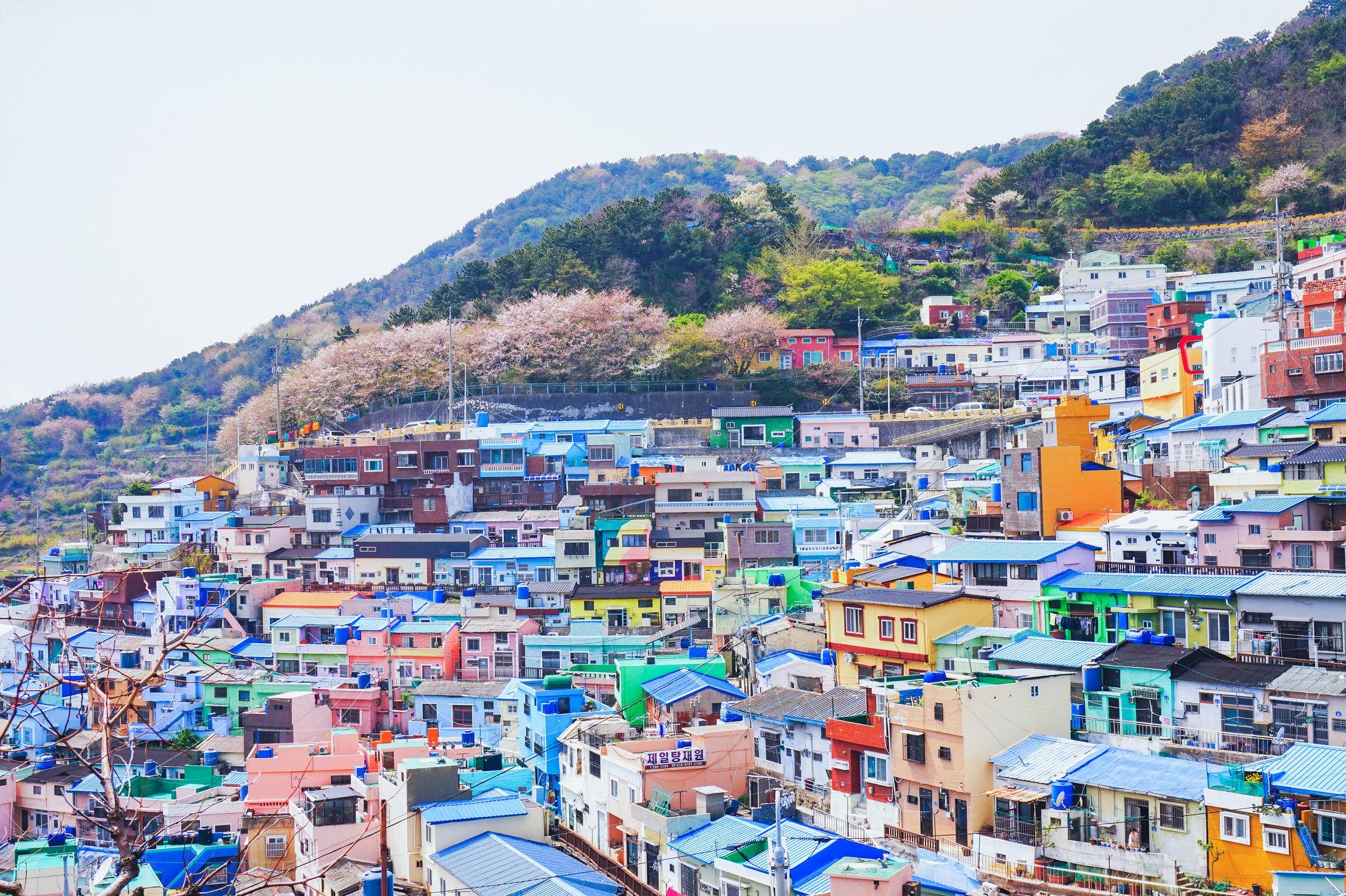 """Kết quả hình ảnh cho Busan"""""""