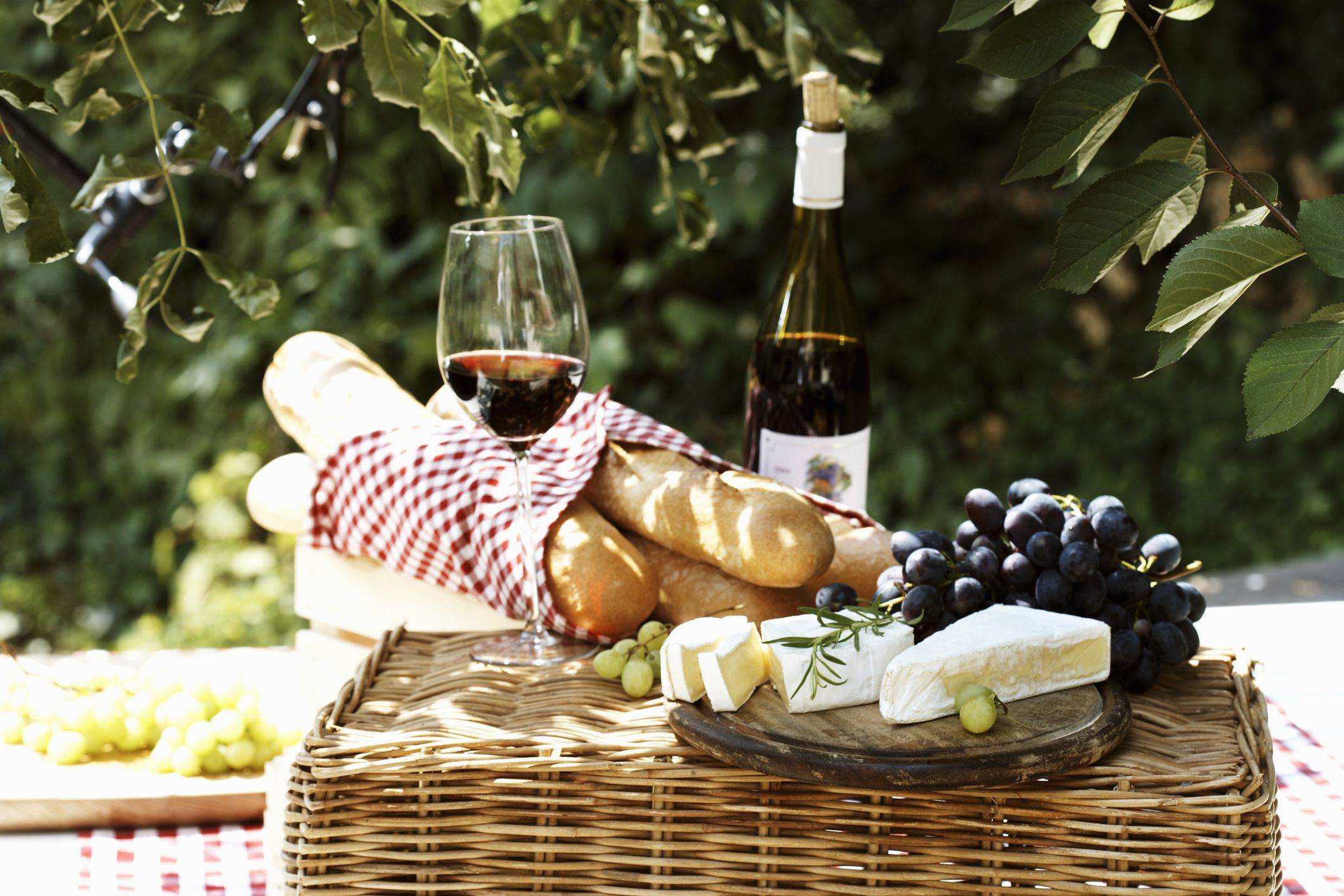 Top French Wine Tours Regions and Wine Routes