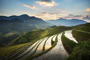 Rice terraces at Mu Cang Chai, Vietnam
