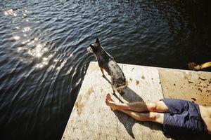 Man lying on dock with dog