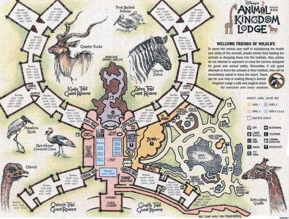Disney World Maps for Each Resort