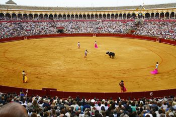See a Bullfight in Malaga, Ronda, or the Costa del Sol