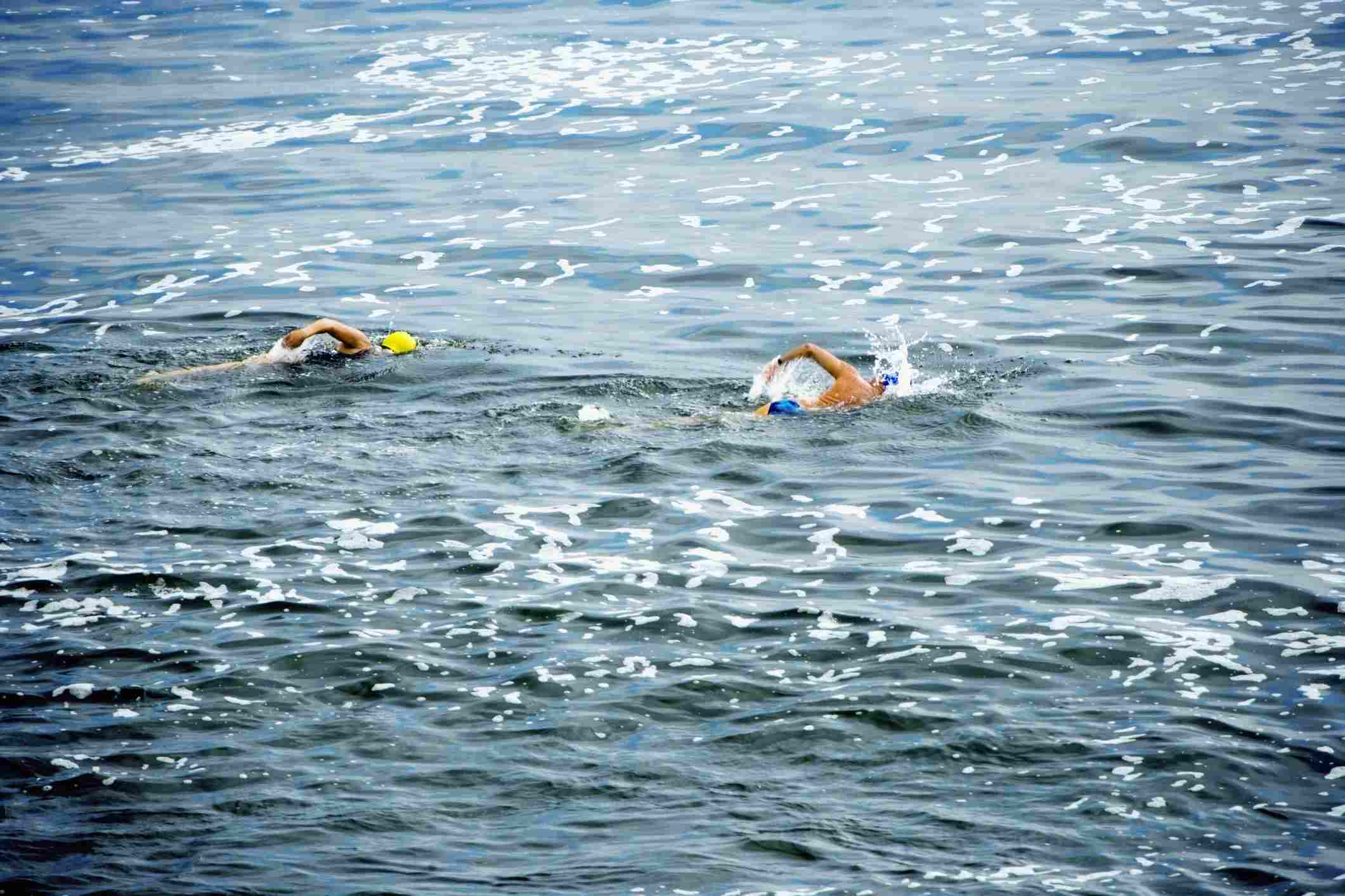 Swimming off the shore of La Jolla in San Diego.