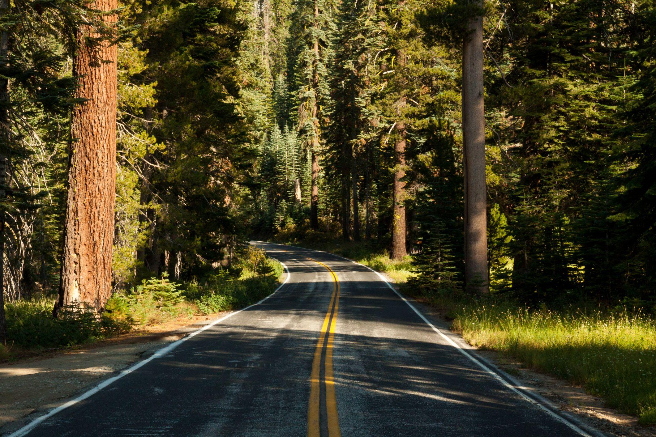 Road in Yosemite