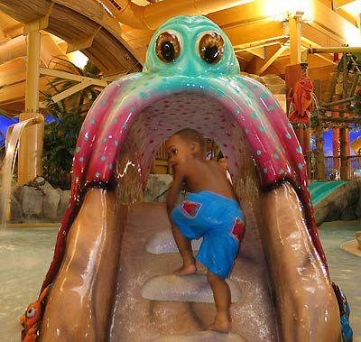 Castaway Bay Indoor Water Park picture