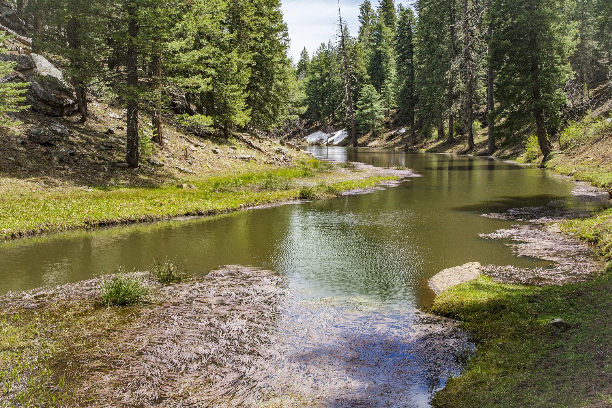 Un lago de Arizona en Payson