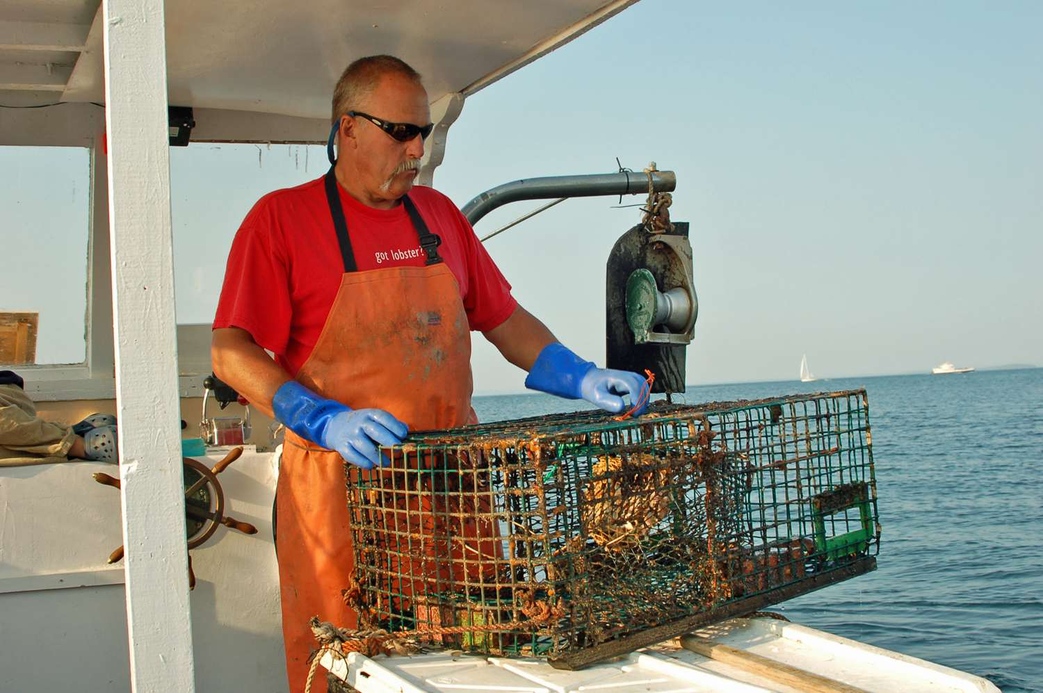 Lobster Boat Tours in Maine