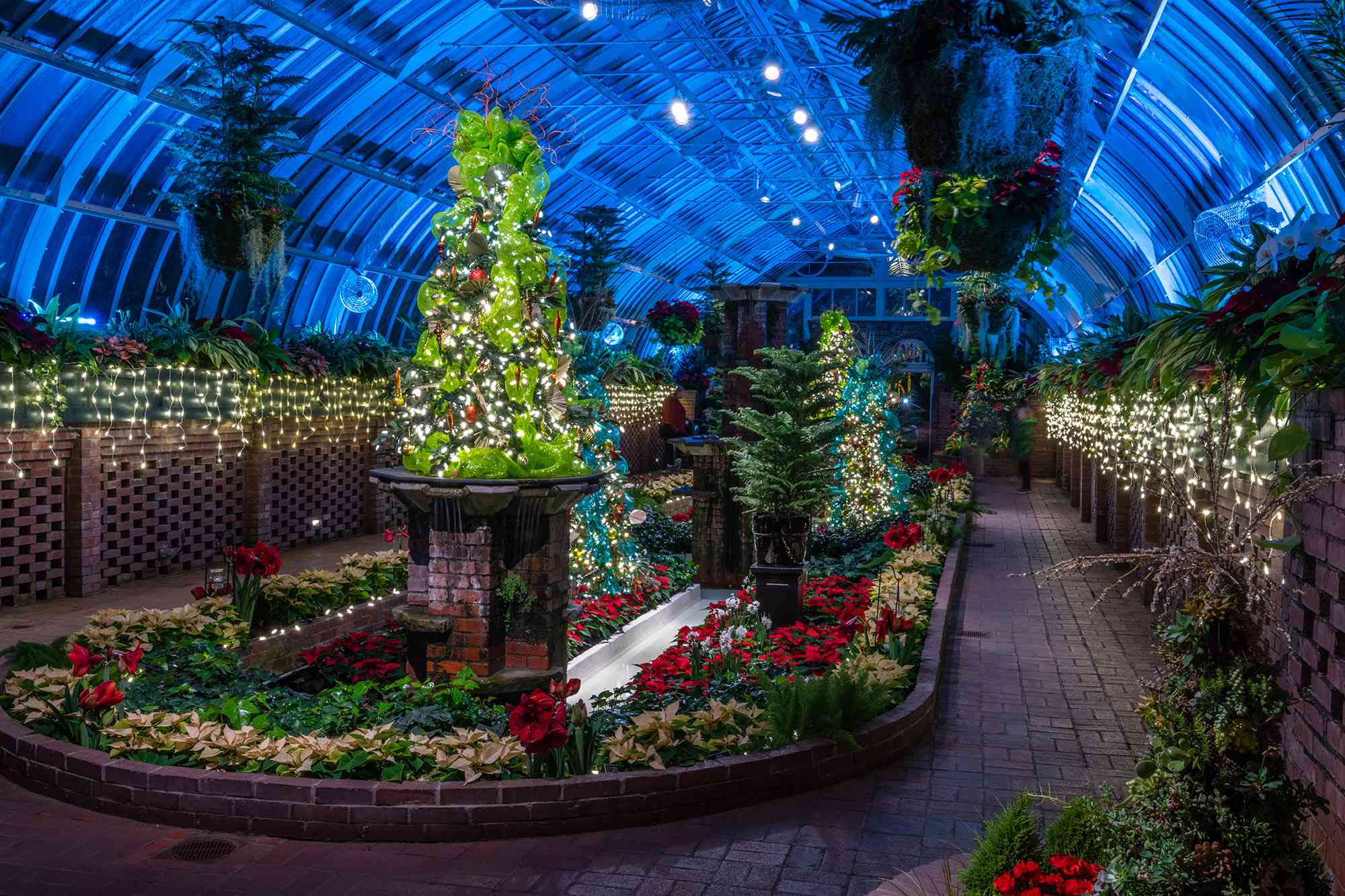 Winter Flower Show at Phipps Conservatory and Botanical Garden