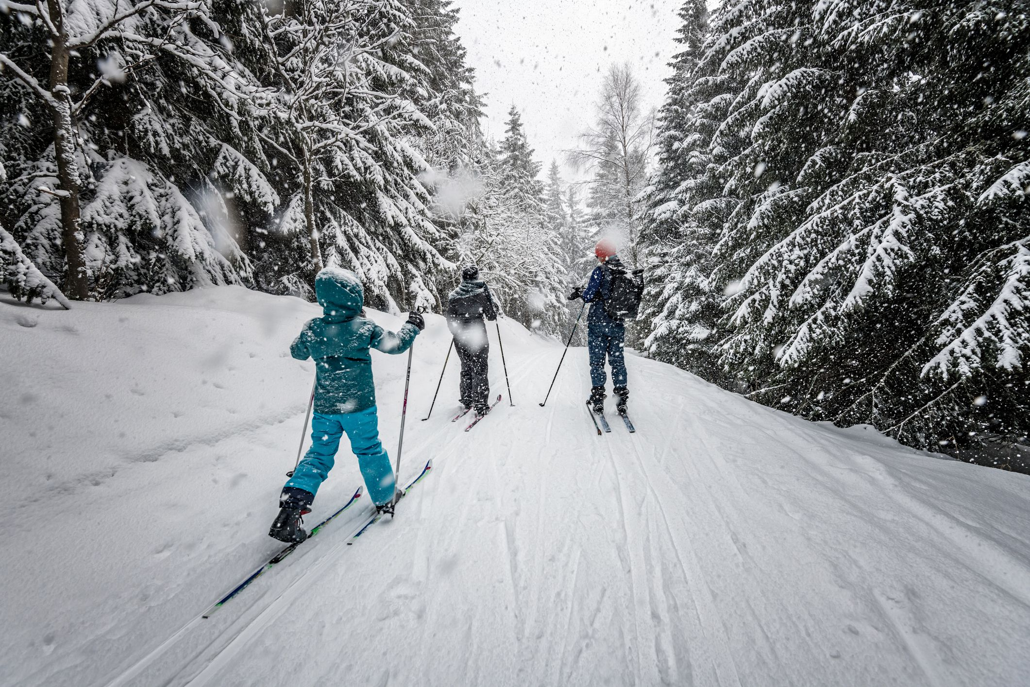 The 8 Best Backcountry Skis