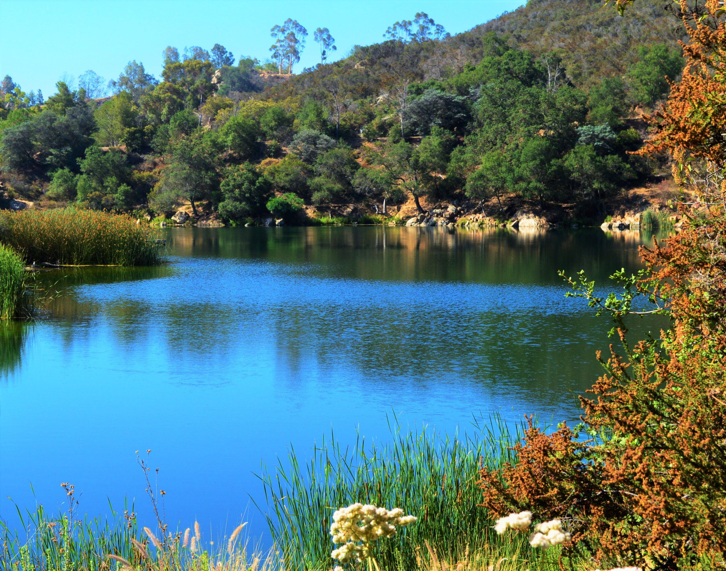 Top Ten Lakes for Fishing in San Diego County