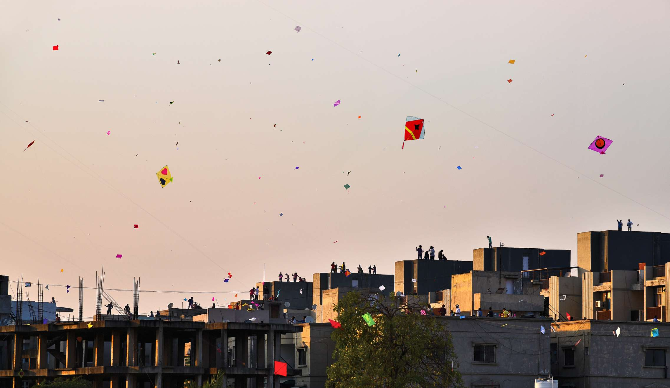 People enjoying Kite flying on Uttrayan (Makar Sankranti), Ahmedabad, Gujarat, India