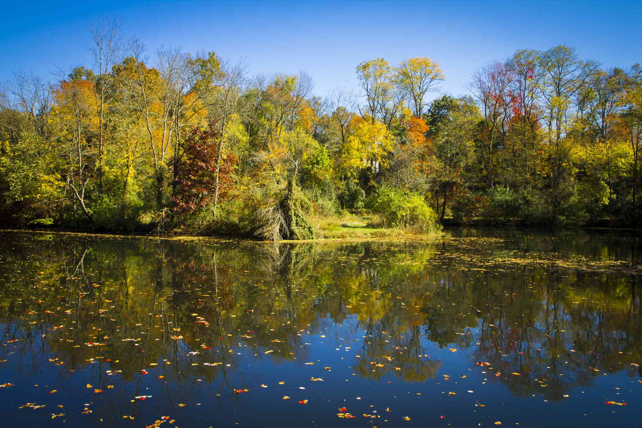 Delaware Canal State Park in Pennsylvania