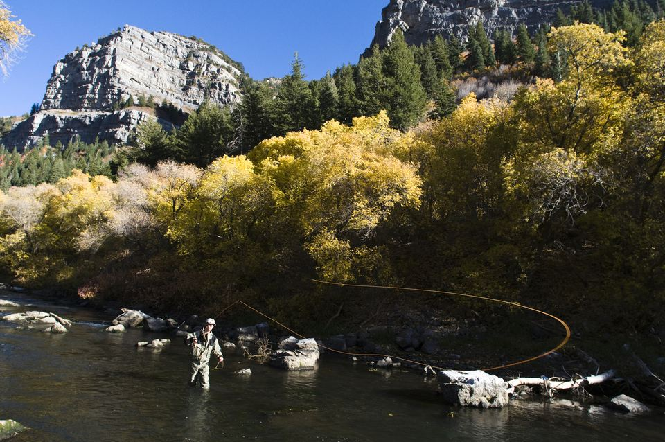 Pesca con mosca en el río Provo en otoño