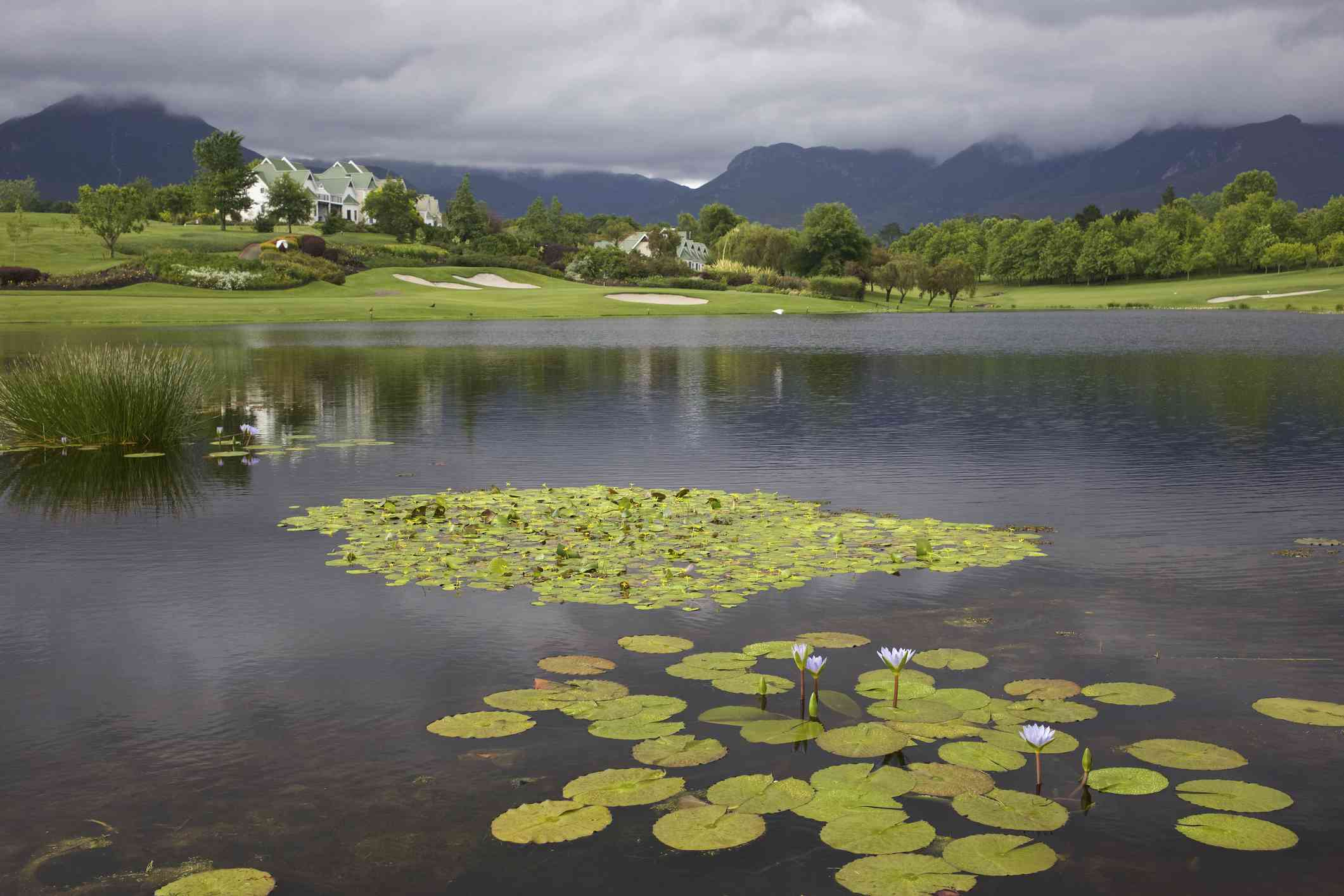 Montagu golf course at Fancourt hotel, George, South Africa