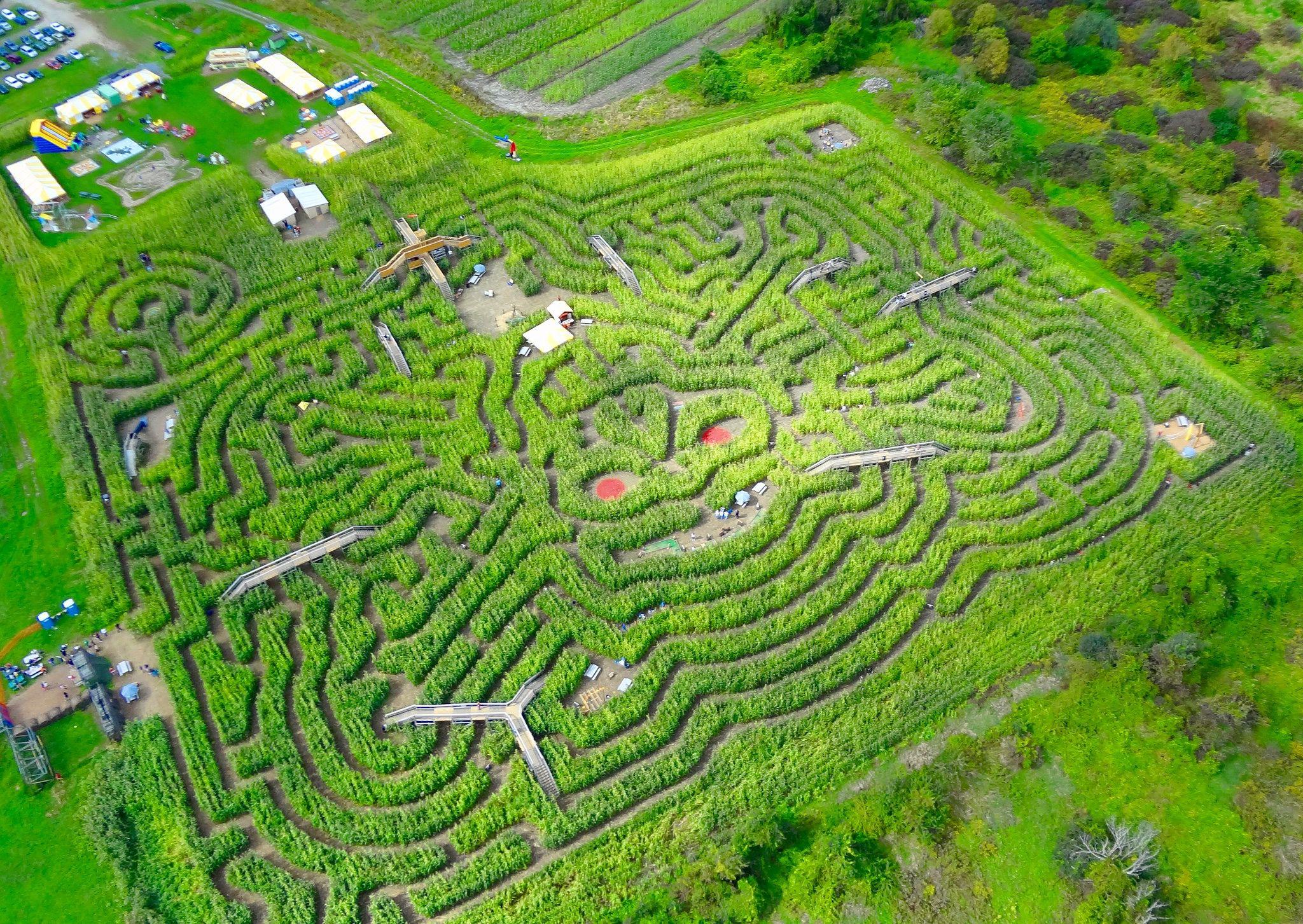 Davis Mega Maze near Boston, Massachusetts