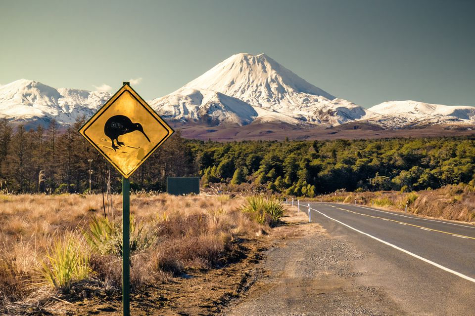 Road sign with skiing Kiwi on it, Mt Ngaruhoe on the background, Ruapehu region, New Zealand