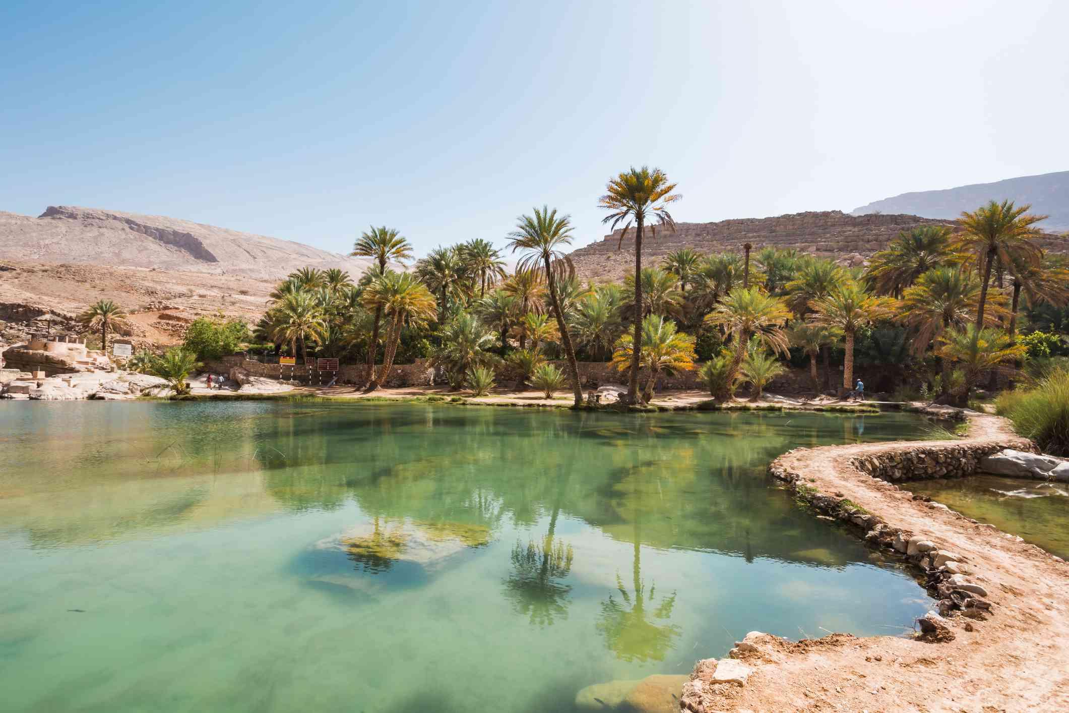 Palm trees around the Wadi Bani Khalid oasis