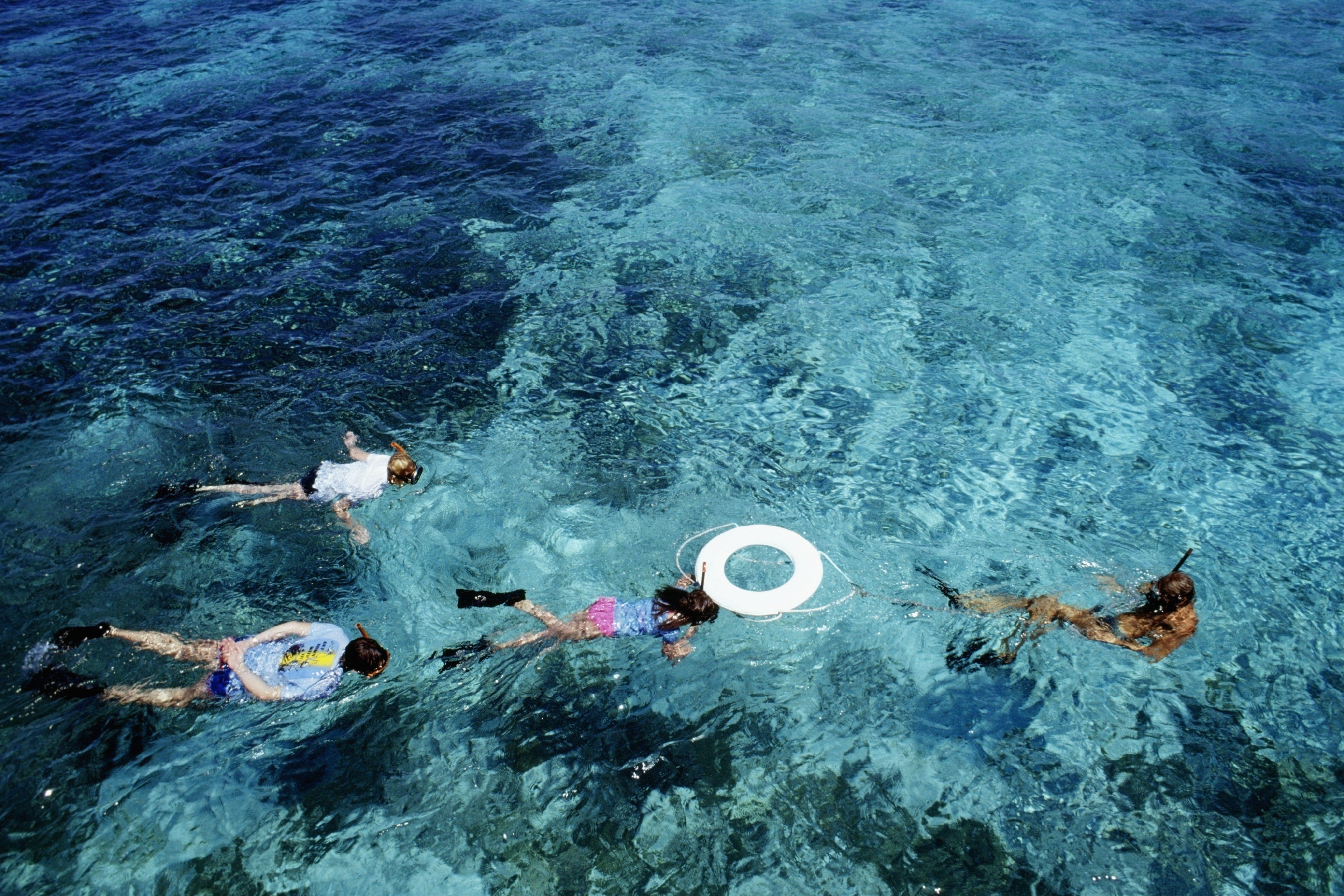 Four people snorkeling, St. Croix, Virgin Islands