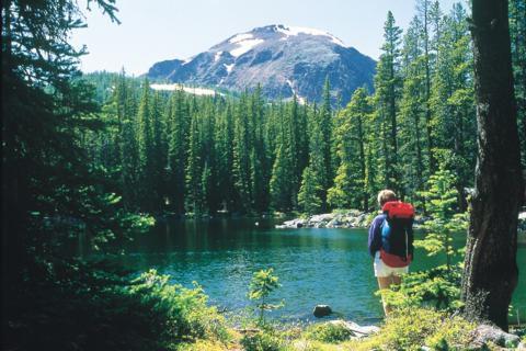 Vancouver Outdoor Activities Camping In