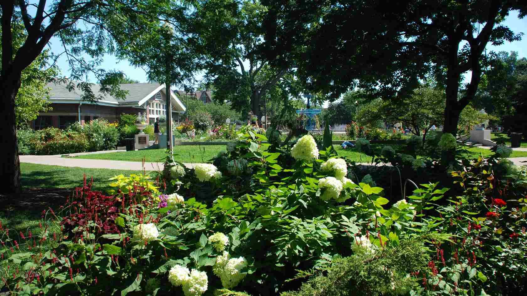 Wicker Park plants