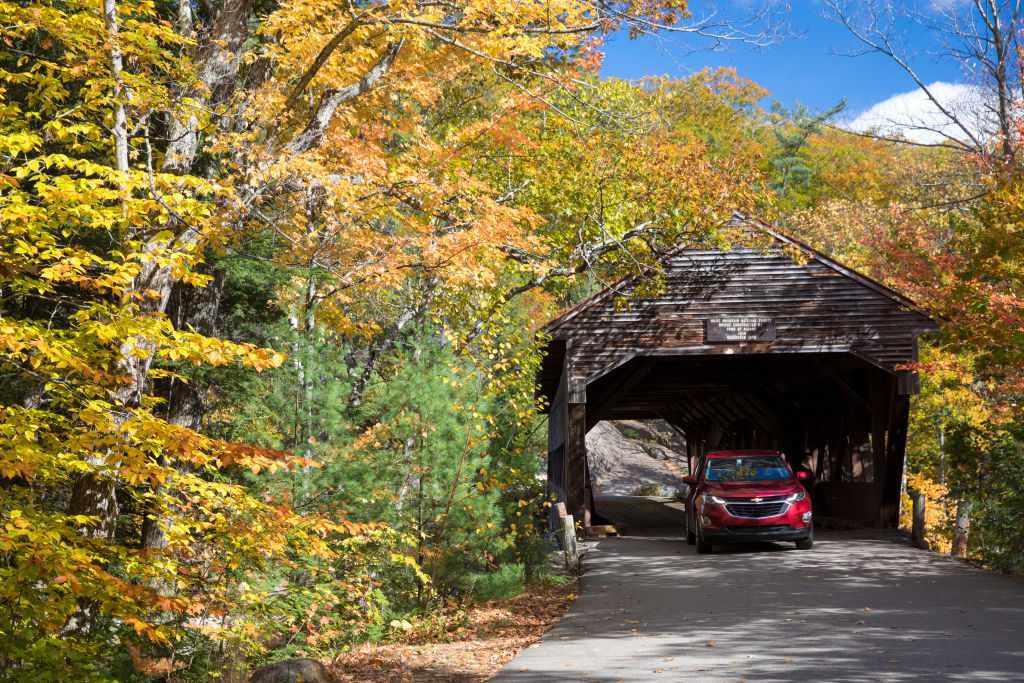 Scenic road in autumn