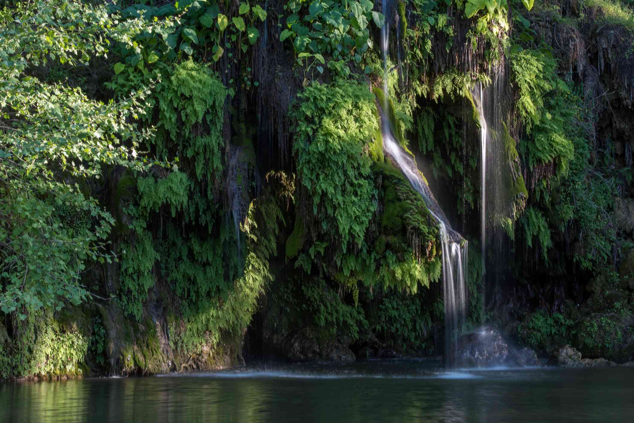 Krause Springs, Spicewood, Texas, USA