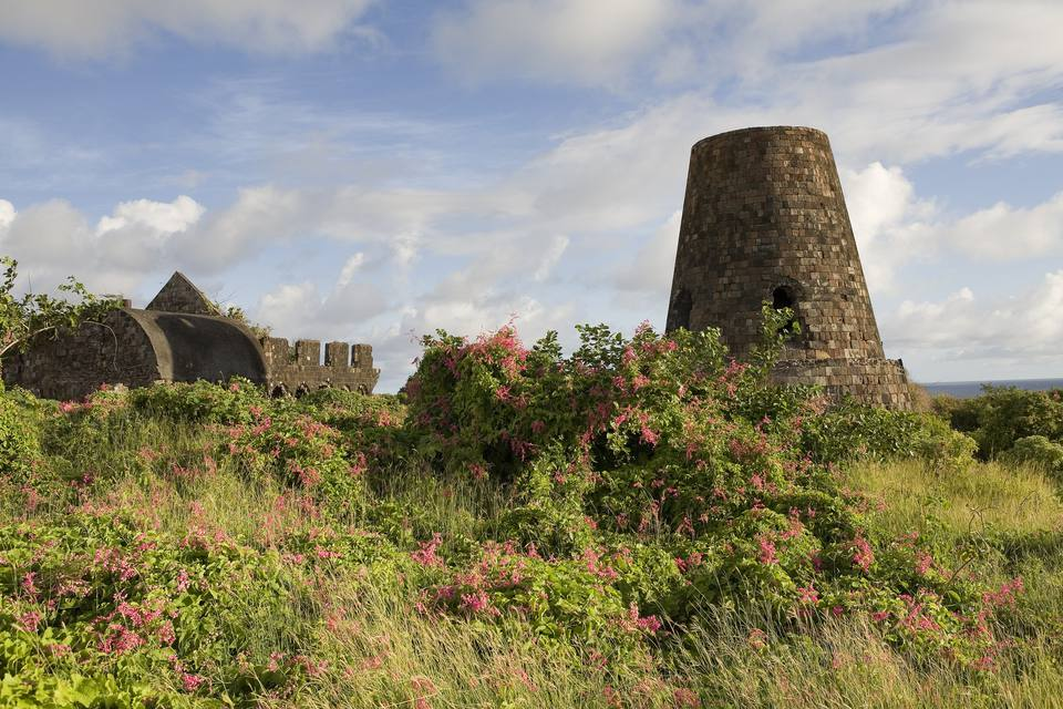 Ruins of the Hamilton estate on Nevis