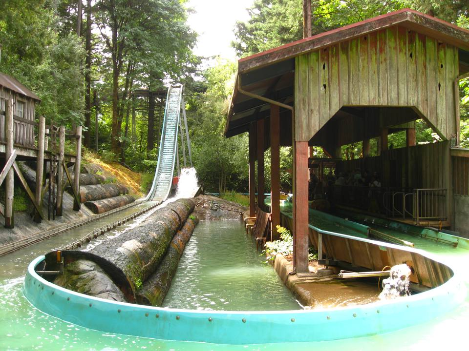 Enchanted Forest Log Ride