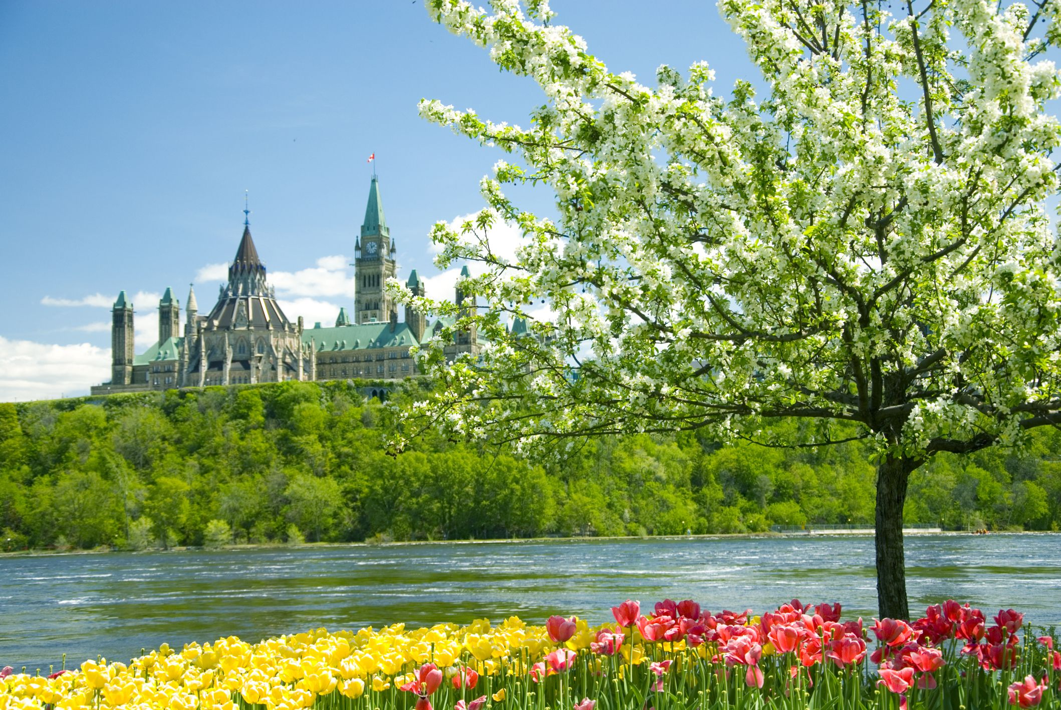 introduction to canadas four seasons spring