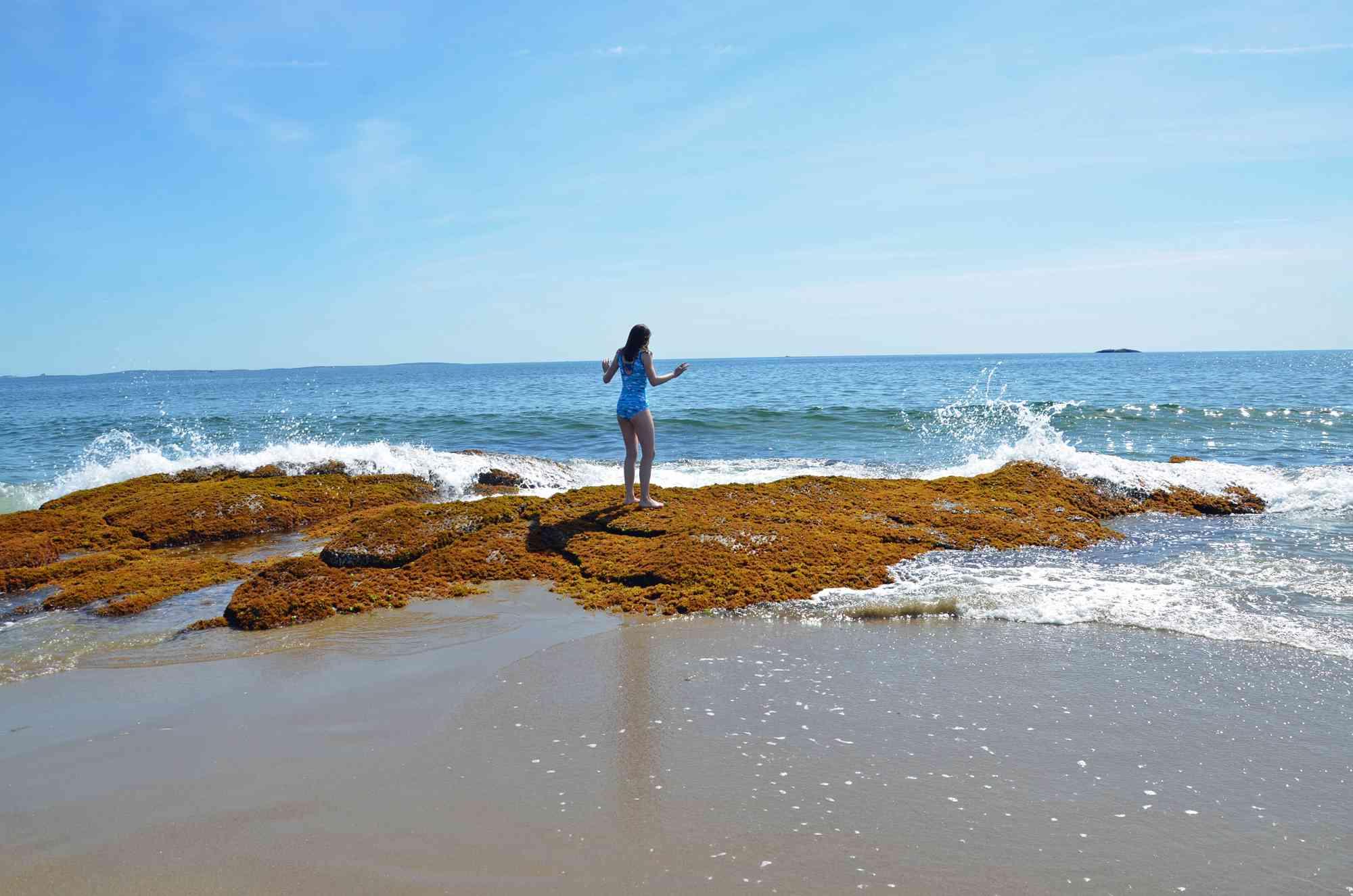 Reid State Park Waves Georgetown Maine