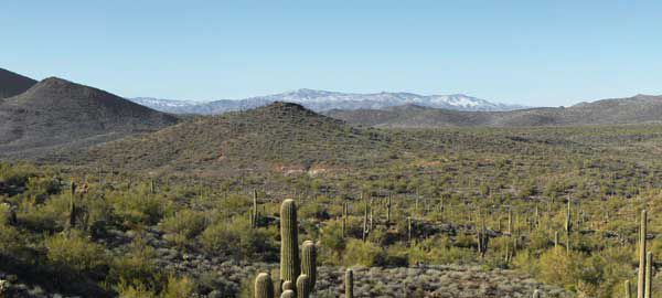 View of snow from the Cave Creek Recreational Area