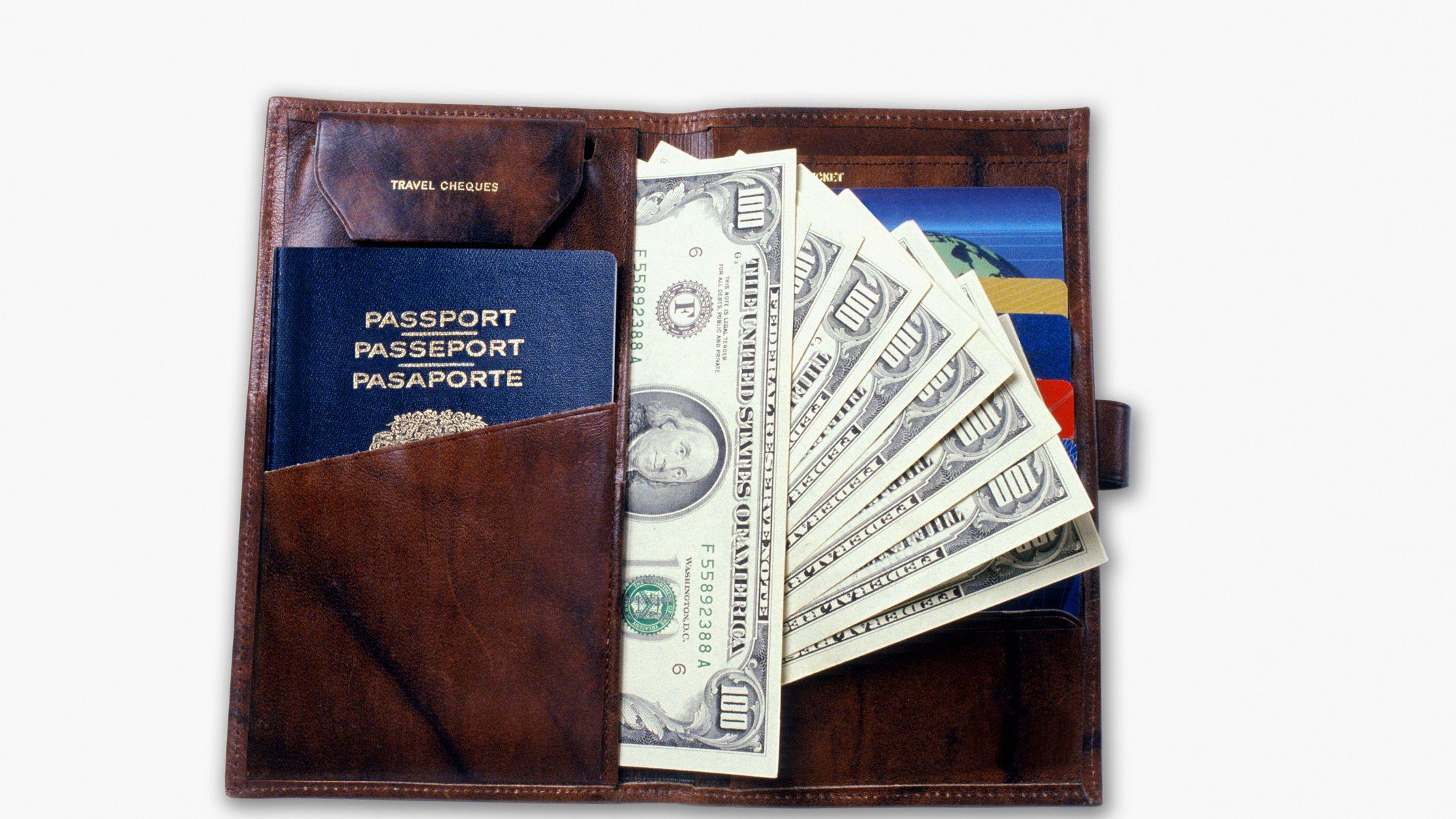 5a8bde14d The 10 Best Passport Holders of 2019