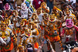 The tiger dance festival, Trissur, Kerala
