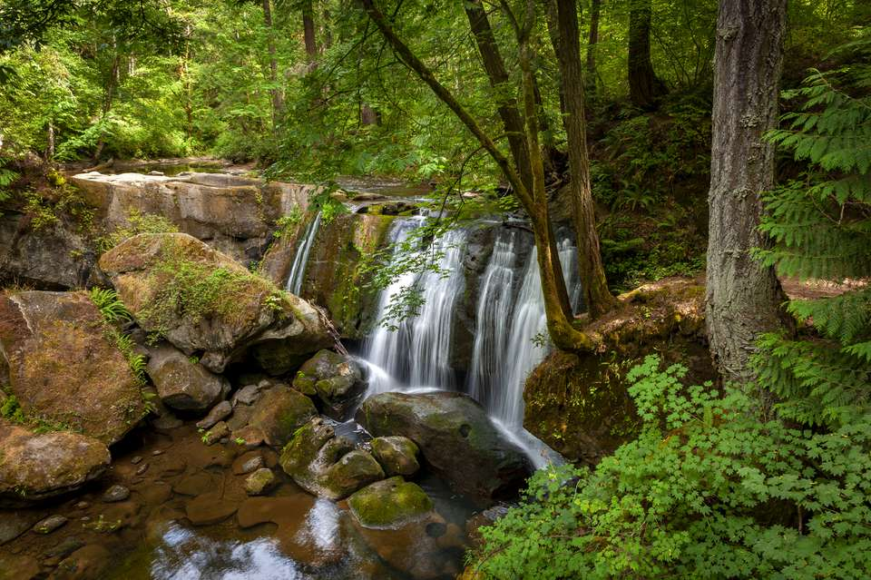 View of waterfalls in a forest in Bellingham, Washington.