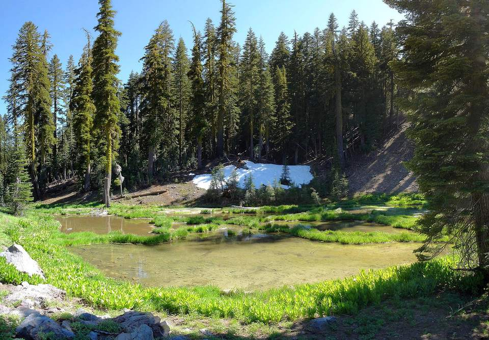 Pond on Brokeoff Mountain hike in Lassen Volcanic National Park, California