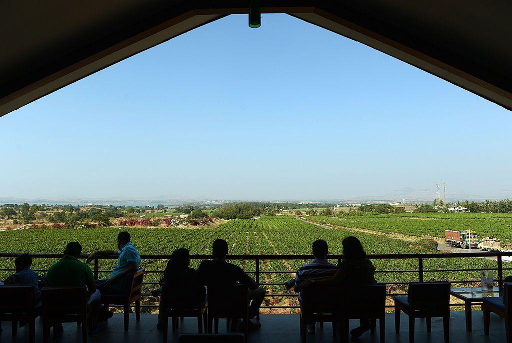 Sula Vineyard in Nashik