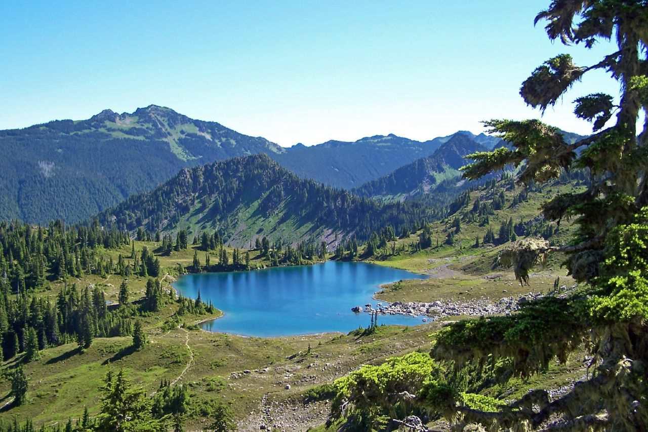 Seven Lakes Basin, Olympic National Park, Washington