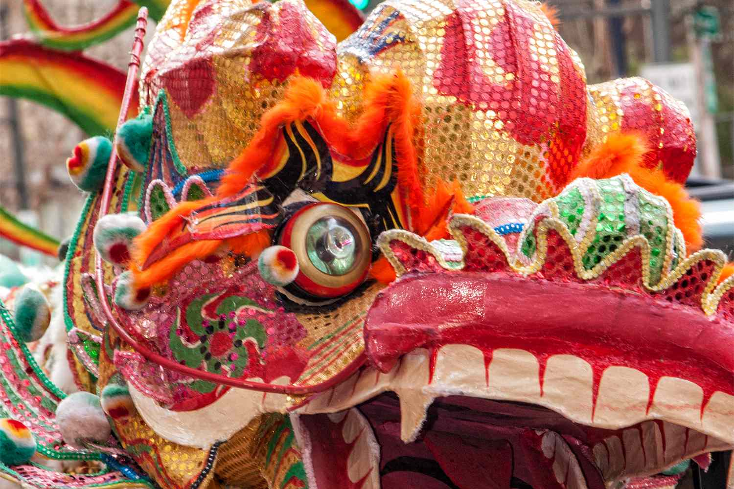 Dragon in the San Francisco Chinese New Year Parade