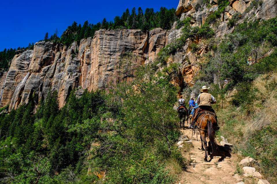 People riding on horses inside the Grand Canyon