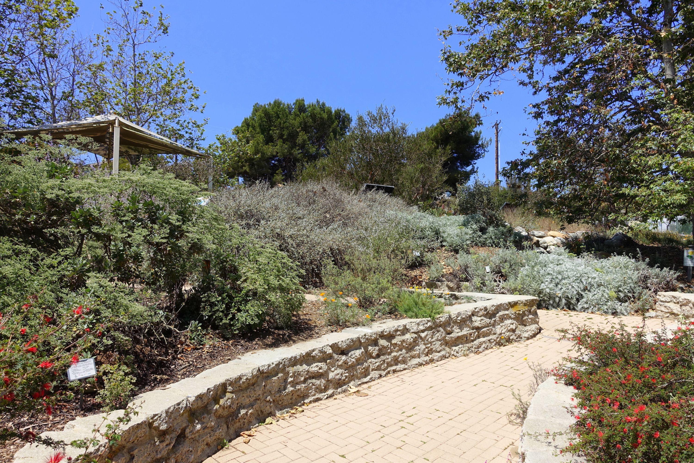 Most Beautiful Public Gardens In Los Angeles