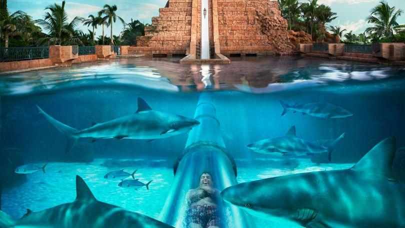 Aquaventure Water Park At Atlantis